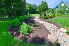 backyard creek bed