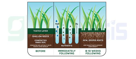 Diagram showing how adding nutrients help roots grow